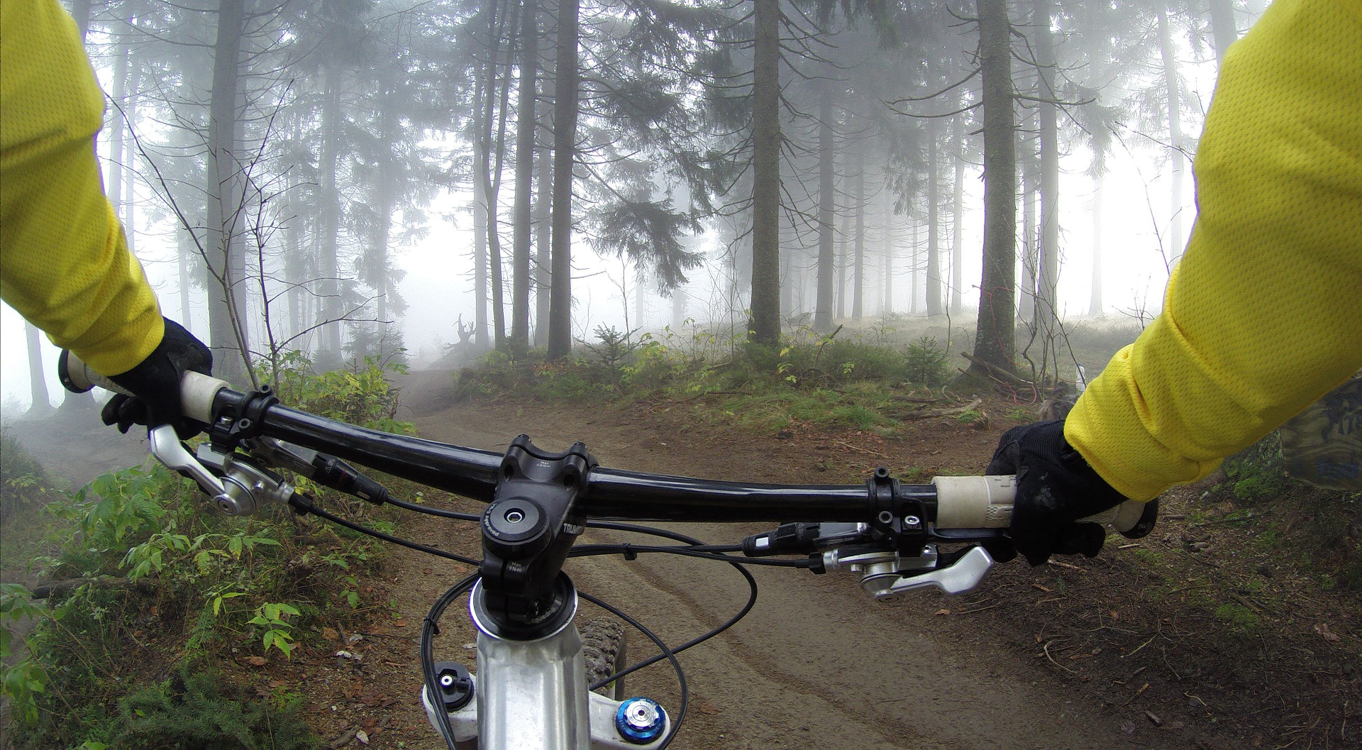 a biker wearing the best cycling gloves while riding a bike through the woods